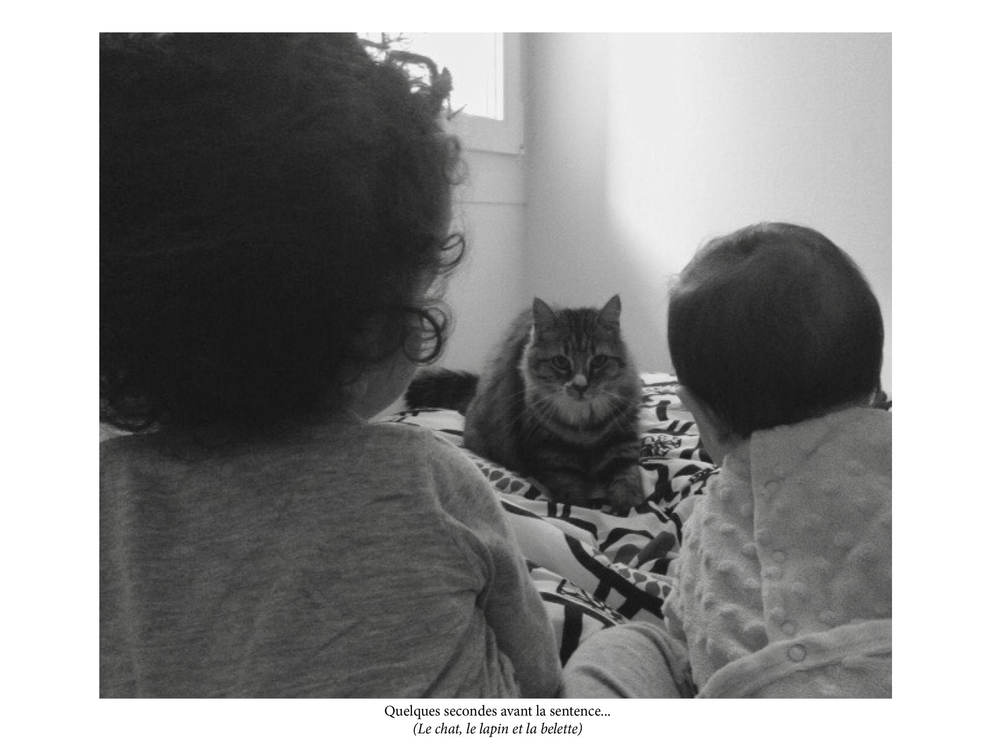 Le Chat, la Belette et Le petit Lapin, Anne-Sophie Dunan Battandier